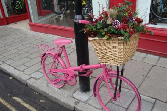 Flower Bike Winter Display